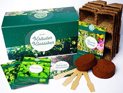 Bio Kräuter Anzuchtset – Kräuter Pflanzset mit 4 Sorten Bio Kräuter Samen, perfektes Gechenk Set zu jedem Anlass, verpackt als Geschenk Box, ideales Geschenk für Frauen und Männer