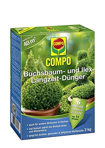 COMPO Buchsbaum- und Ilex...