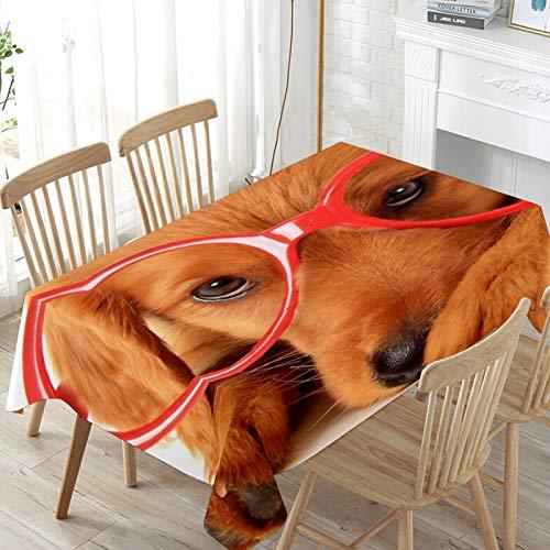 LIUBT Lindo perro con gafas rectangular mantel boda fiesta comedor picnic cocina mesa cubierta lavable 60 W x 60 L