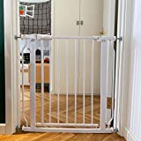 Best Dog Gates - BalanceFrom Easy Walk-Thru Safety Gate for Doorways and Stairways Review