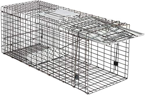 HomGarden Live Animal Trap 32inch Catch Release Humane Rodent Cage for Raccoon, Rabbit, Groundhog, Stray Cat, Squirrel, Mole, Gopher, Chicken, Opossum, Skunk & Chipmunks Nuisance Rodents