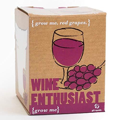 Gift Republic Kit de Cultivation de vin enthousiaste