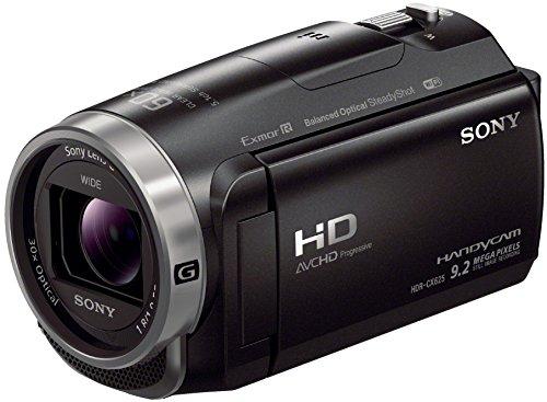 Sony HDR-CX625 30-fach Bild