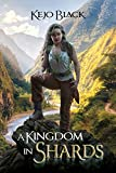 A Kingdom In Shards (The Shards of Raeth Book 1) (English Edition)