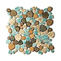 Pebble Porcelain Tile Fambe Turquoise Green Beige Shower Floor Pool Alley Tiles Mosaic TSTGPT005 (10 Square Feet)