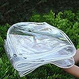 Nienyu Lona de Plástico PVC Impermeable con Ojales, 0.35 mm Toldo de Antienvejecimiento, Toldo de Lluvia Impermeable para Plantas de Flores Transparentes, para Patio al Aire Libre.1.8mx2m