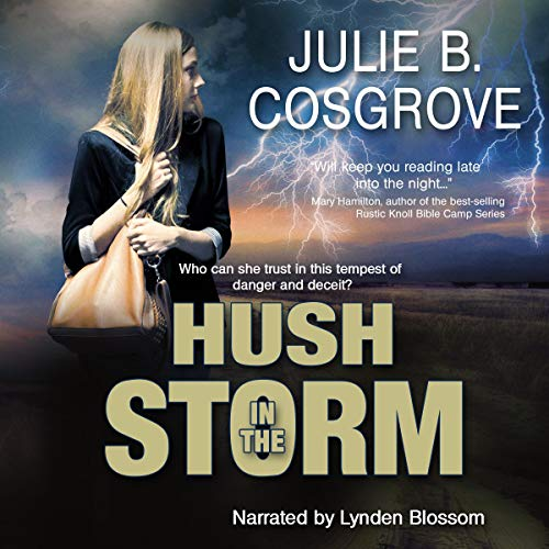Hush in the Storm audiobook cover art