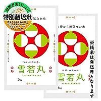 山形県鶴岡市 特別栽培米 雪若丸 白米10kg(5kg×2袋) 令和元年産