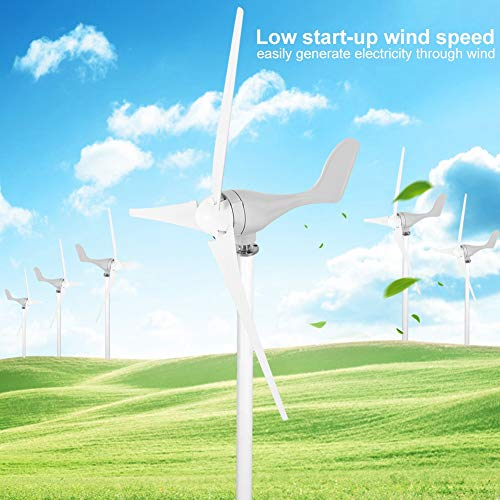 Zoternen Windturbinengenerator-Set, 500 W, 12 V