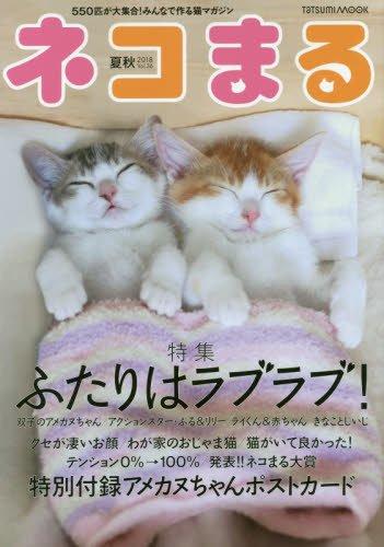 ネコまる 夏秋号 Vol.36 (タツミムック)
