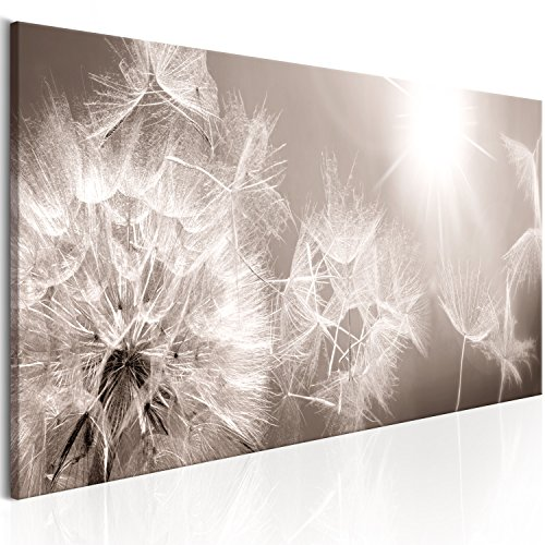 murando - Bilder 150x50 cm Vlies Leinwandbild 1 TLG Kunstdruck modern Wandbilder XXL Wanddekoration Design Wand Bild - Blumen Blitz Pusteblumen Natur b-C-0161-b-a