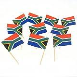 Südafrika | South African Flagge Zahnstocher (100)