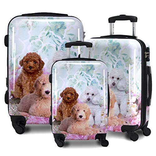 Chariot Printed Expandable Hardside Spinner Luggage Set, Poodle, 3-Piece (20/24/28)
