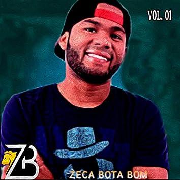 Zeca Bota Bom, Vol. 1