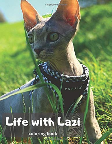 Life with Lazi: Coloring Book + Optical Illusions with Purebred Cats: Devon Rex, Relaxing Book for Kids aged 3-6 Great Adventure!