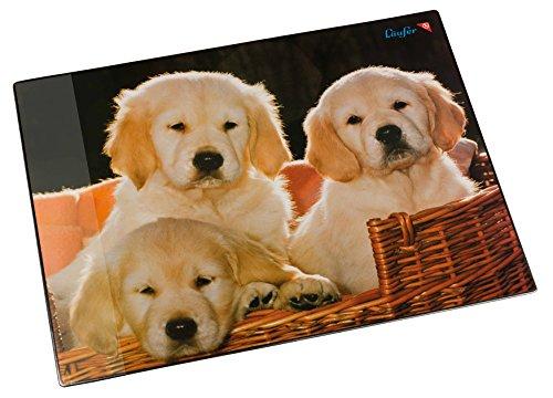 Läufer 46581 Schreibtischunterlage Hunde, 53x40 cm, rutschfeste Schreibunterlage für Kinder, verschiedene Motive, mit transparenter Seitentasche