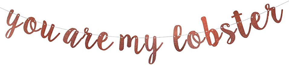 You are My Lobster Banner for Valentine's Day,Friendships Party Decorations Supplies Fancy