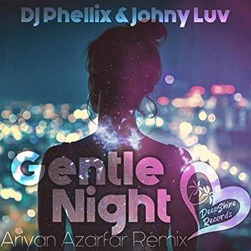 Gentle Night (Ariyan Azarfar Remix)