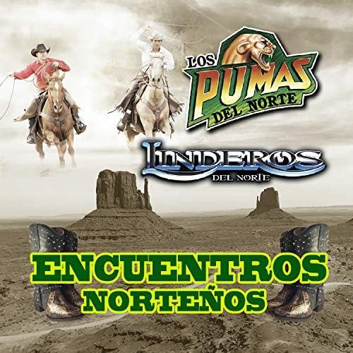 Linderos del Norte & Los Pumas Del Norte
