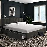 DHP Rose Storage Upholstered Bed, Gray Velvet, King