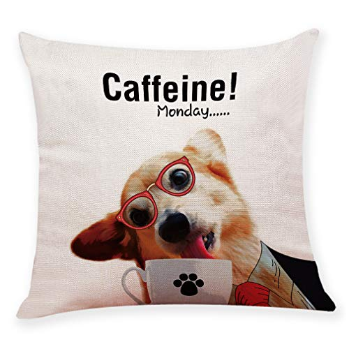 Caffeine Monday pillow case