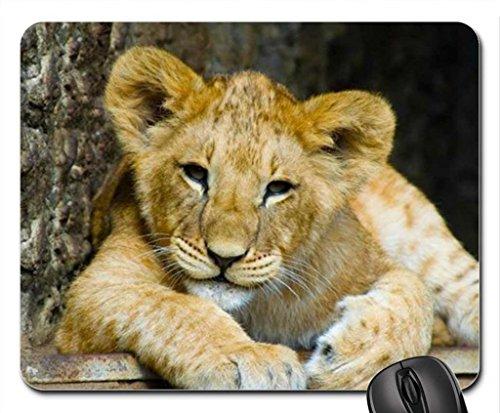 Lion Cub Mouse Pad – Tapis de souris (Cats Mouse Pad)