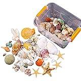 VVXXMO Acuario Playa Conchas Decoración Azar Estrella De Mar Caracol Coral Ornamento Para Tanque De Pescado Boda Fiesta Adornos