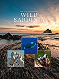 Wild Sardinia: Pearl of the Meditteranean Sea