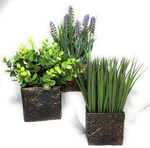 Valynn's Veranda Artificial Potted Plants - Lavender Boxwood Eucalyptus Watergrass, Set of 3 Pots, 8.86' to 11.8' Tall, Indoor Plants Artificial Faux Greenery for Modern Home Room Decor