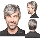 BERON Men's Short Straight Wig Silver Grey Cosplay Costume Wig Full Synthetic Wigs Wig Cap Included