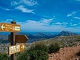 Oedim Señaletica para Vias Verdes Camino Rurales Señaletica Informativa Personalizada 125,00 cm x 25,00 cm | Señales Direccionales Informativas | Aluminio 3 mm Resistente