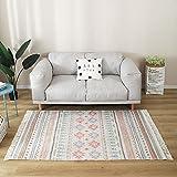 Alfombra de área de Tejido marroquí con borlas, alfombras de algodón con tuertos Vintage, impresión a Mano Lavabas de Tejido Plano Lavable alfombras para Sala de Estar,J,120×160cm/3.9×5.2ft