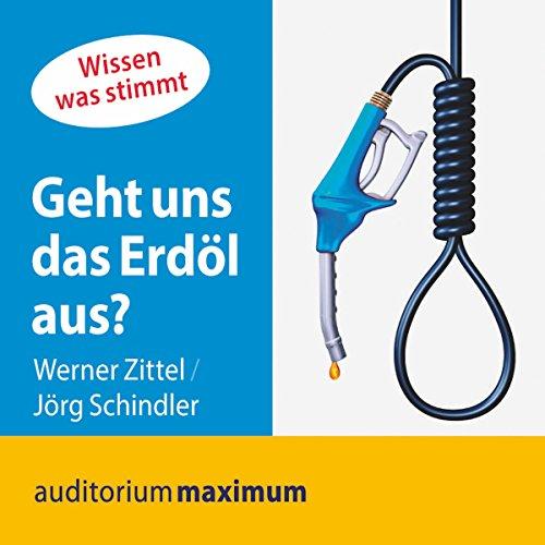 Geht uns das Erdöl aus? (Wissen was stimmt) audiobook cover art