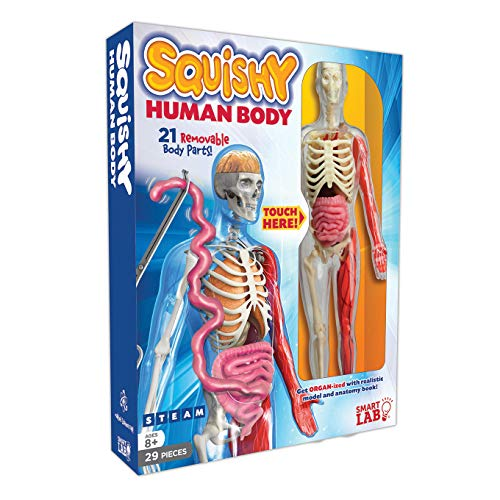 Product Image of the SmartLab Toys Squishy Human Body, Multicolor, Standard