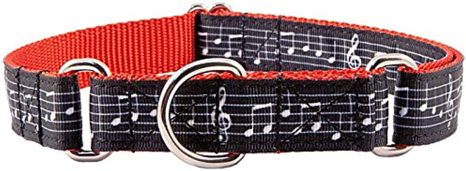 Country Brook Design   Sheet Music Ribbon on Red Martingale Dog Collar  Small