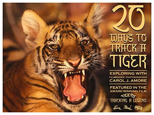 20 Ways to Track a Tiger: 20 Ways to Track a Tiger (English Edition)