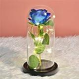 MUCHEN SHOP La Bella y La Bestia Rosa,Kit de Rosa Eterna Luz LED Rosa Encantada en Cúpula Vidrio Rosas de Seda para Día la Madre Día de San Valentín Aniversario Bodas Símbolo de Amor Roja (Flor Azul)