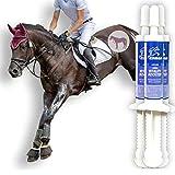 EMMA aminoácido y Vitamina E para Caballos Booster I Pasta Oral para el Suministro rápido de aminoácidos I apoya la construcción de músculo, el Rendimiento y la energía 3 Pieza