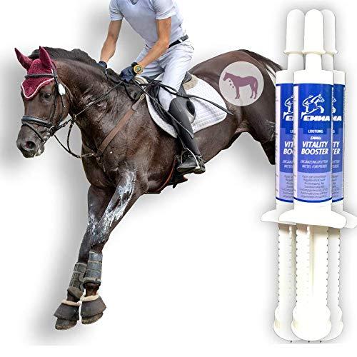 Aminosäuren Paste für Pferde I Amino Booster I Vitamin E Bierhefe I Energy Booster I Aufbaufutter Muskelkater I Regeneration der Muskulatur Leistung I Muskelaufbau I Salze Magnesium Pferd 3 * 30 ml
