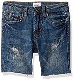 HUDSON Boys' Toddler Denim Jean Shorts, Repaired Heavy Destroyed, 2T