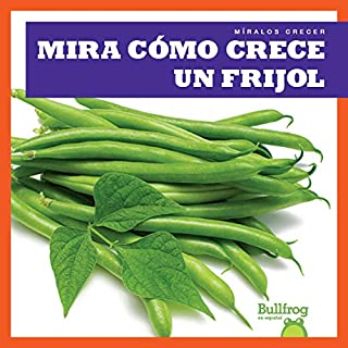 Mira Como Crece Un Frijol (Watch a Bean Grow) (Míralos Crecer / Watch It Grow)