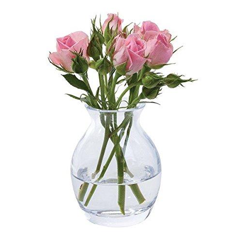 Dartington - Jarrón de Cristal para Flores, Transparente