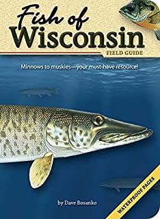 wisconsin game and fish