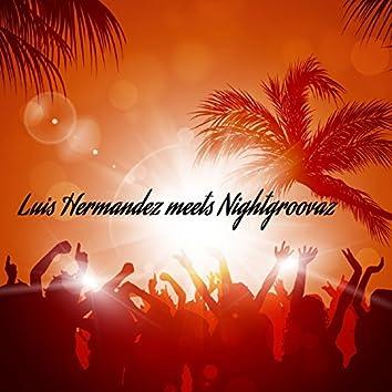 Luis Hermandez Meets Nightgroovaz