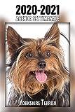 2020-2021 Agenda Settimanale Yorkshire Terrier: 221 Pagine   Dimensioni DIN A5   Pianificatore   24 Mesi   Due Pagine Per Settimana   Calendario   Diario   Cane   In Italiano