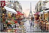 INMOZATA Malen nach Zahlen Erwachsene DIY Handgemalt Ölgemälde auf Leinwand mit 3 Pinsel für Geburtstag Weihnachten Geschenk 40 x 50cm—Straßenansicht von Paris (Ohne Rahmen)
