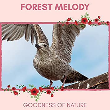 Forest Melody - Goodness of Nature