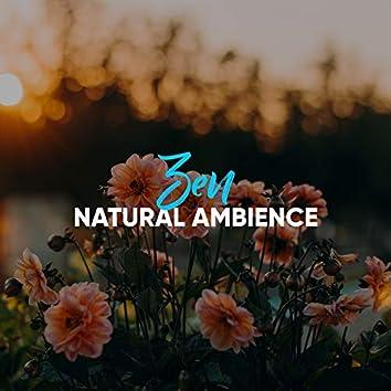 #Zen Natural Ambience