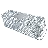Best Raccoon Traps - netuera Live Animal Trap Extra Large Rodent Cage Review