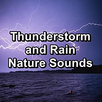 Thunderstorm and Rain Nature Sounds